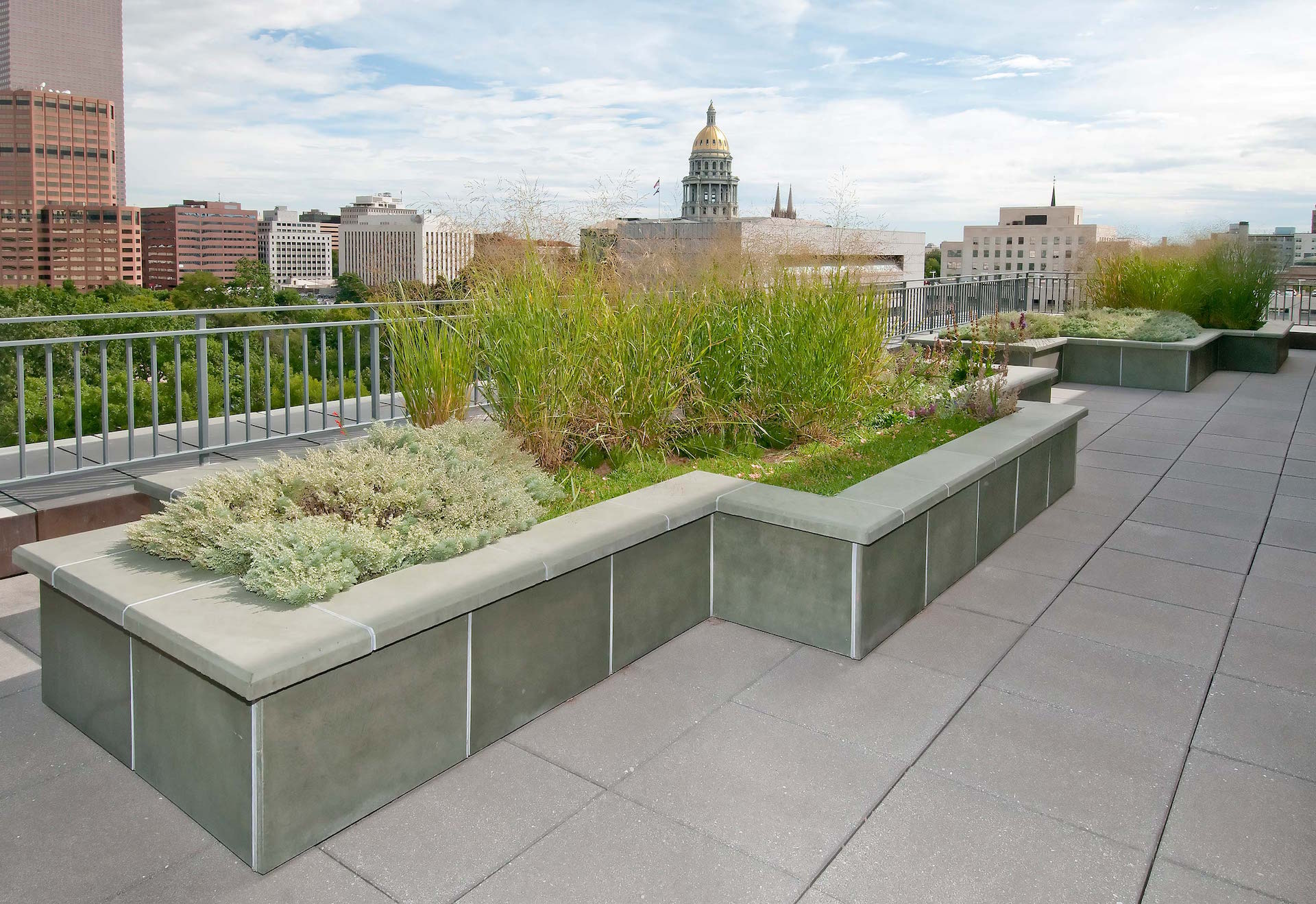 Denver Public Library Green Roof Lime Green Design Lime